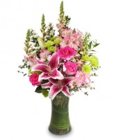 STARSTRUCK Floral Arrangement in Plymouth, MA | CAROLE'S FLOWERS AND GIFTS