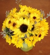Sunflower Delight hand tied bouquet
