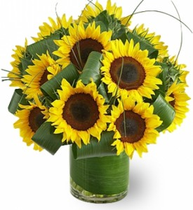 SUNFLOWER  FIELD BOUQUET