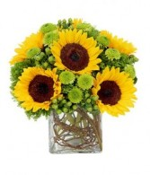 Sunflower Suprise by Enchanted Florist