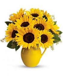 Sunny Day Pitcher of Sunflowers all around it
