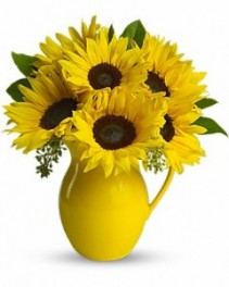 Sunny Day  Pitcher of Sunflowers Roma florist