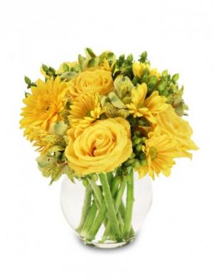 Sunshine Perfection Floral Arrangement in Greenfield, IN | BEAUTIFUL BEGINNINGS FLORAL SHOP INC