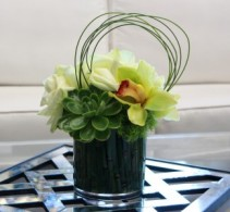 Swooping Succulent Flower and Succulent Arrangement