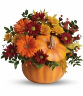 Teleflora's COuntry Pumpkin Bouquet Fall in Bloomfield, NY | BLOOMERS FLORAL & GIFT