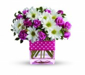 Teleflora's Polka Dots and Posies T523A Mother's Day, Spring, Baby, Birthday, Celebration