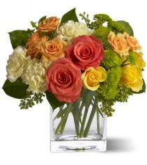 Citrus Splash Keepsake Low and Lush Floral Arrangement