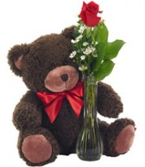 This one's for You   Brown Teddy with Rose