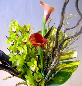 Tropical Vase Arrangement in Toronto, ON | BOTANY FLORAL STUDIO