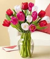 Tulips For Your Sweetheart!!