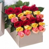 Two Dozen Roses mix in the box. Roma Florist