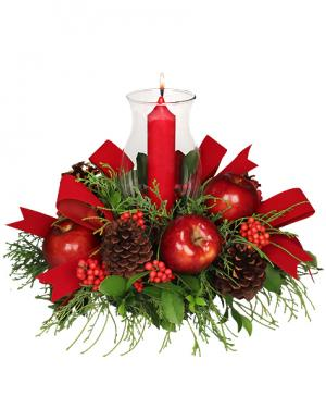 VELVETY RED CENTERPIECE Holiday Arrangement in Amelia Island, FL | ISLAND FLOWER & GARDEN