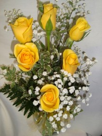 Six Bright Yellow  Roses with babys breath  arranged in a vase.