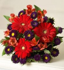 Winter Beauty Bouquet of Red Gerbera Daisies