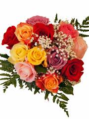 Wrapped Assorted Colors Bouquet (Pick Up Only) One Dozen Mixed Roses Long Stem 50 & 60 cm ((PICK UP  ONLY))