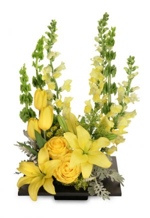 YOLO Yellow Arrangement in West Hills, CA | RAMBLING ROSE FLORIST