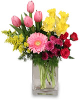 SPRING IS IN THE AIR<br/>Arrangement Tulips, Daffodils, Iris, Gerbera Daisy