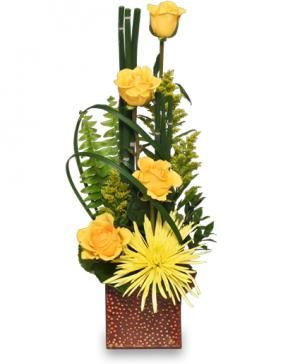 Anniversary Flowers White Plains Md Creative Expressions Florist