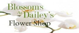 Blossoms at Dailey's Flower Shop