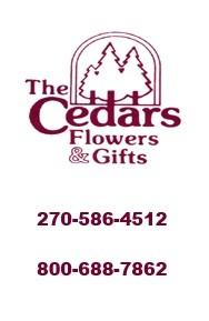 CEDARS FLOWERS & GIFTS INC.