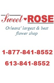 2412979 Ontario Inc./Sweetheart Rose