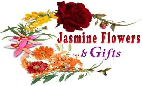 Colorado springs florist colorado springs co flower shop jasmine colorado springs florist colorado springs co flower shop jasmine flowers gifts negle