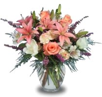About us hearts flowers of coral springs coral springs fl hearts flowers of coral springs is your premier coral springs fl florist delivering friendly and professional service along with the highest quality mightylinksfo